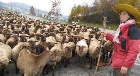 Singing-Shepherd: Hans Breuer