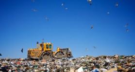 landfill-DArcy-Norman